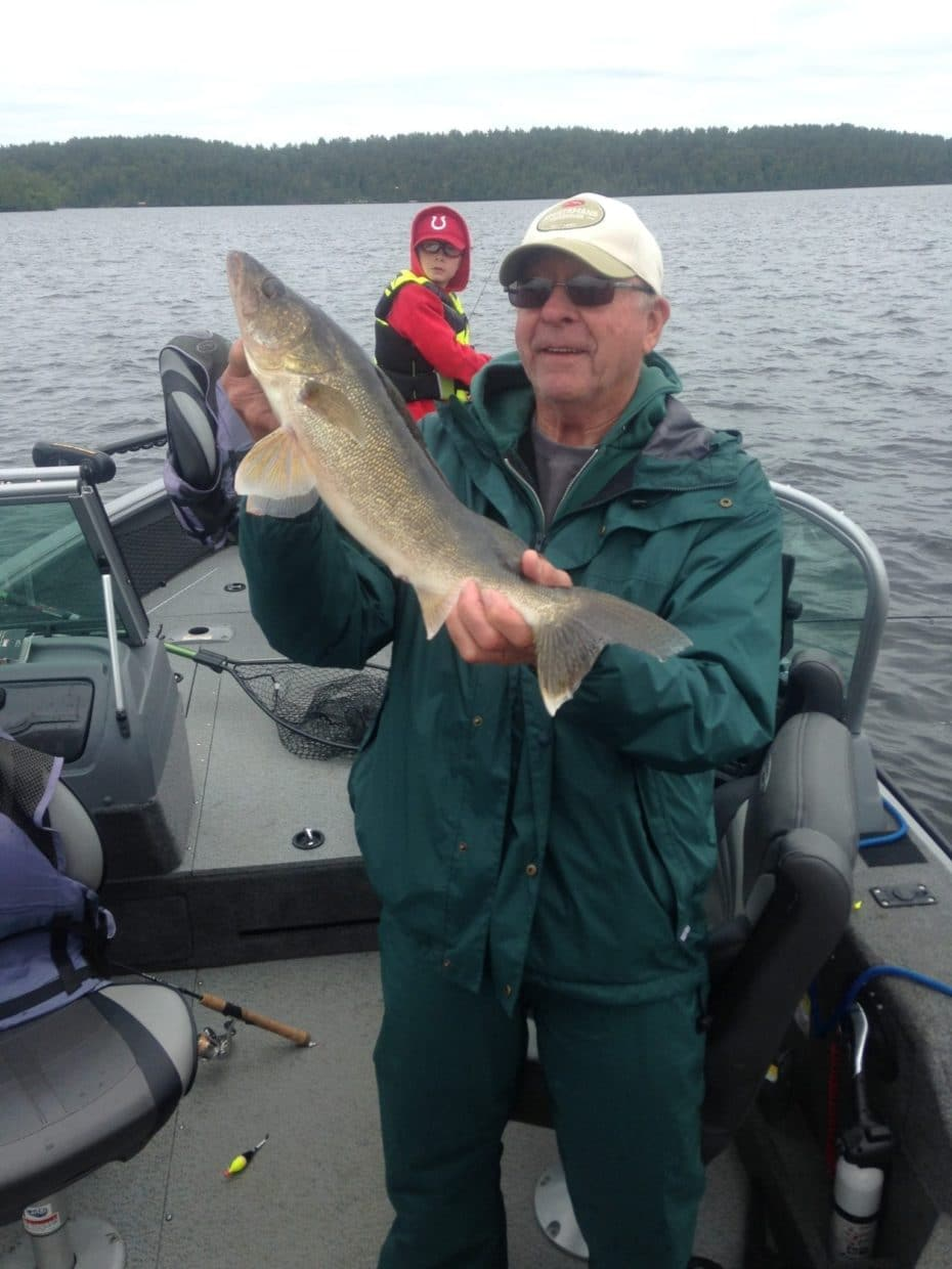 walleye caught on Lake Vermilion