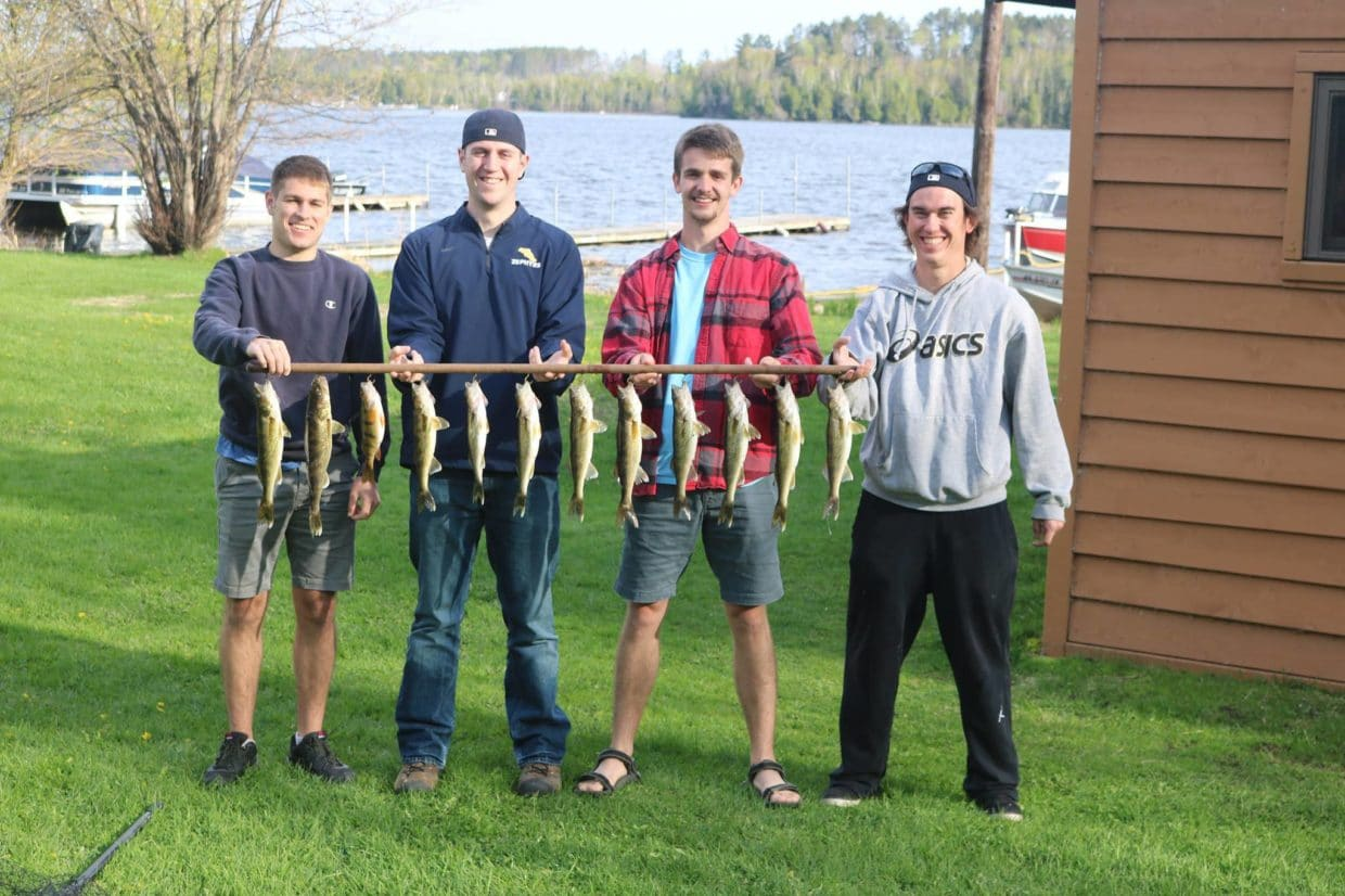 Lake Vermilion walleyes