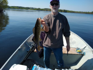 Man holding Lake Vermilion walleye