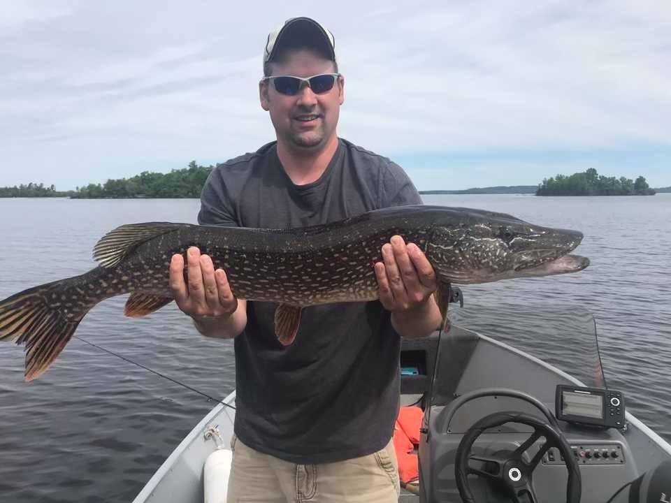 man holding northern pike on Lake Vermilion