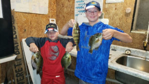 boys holding bluegills and perch